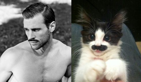 10 Hilarious Comparisons of Men And Cats in the Similar Poses!
