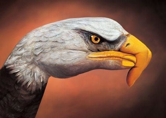 15 Truly Amazing Hand Drawings by Guido Daniele!