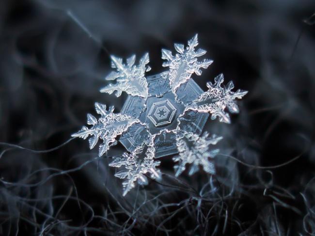 10 Amazing Macro Photography of Snowflakes!