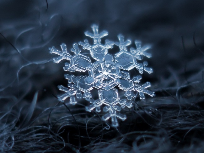 10 Amazing Macro Photography of Snowflakes!