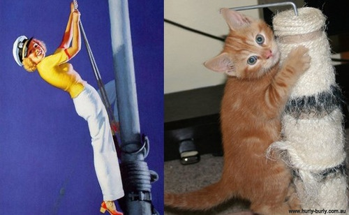 13 Hilarious Comparisons of Women And Cats in the Similar Poses!