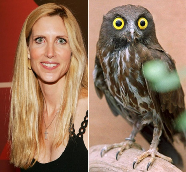 10 Celebrities That Look Like Animals!