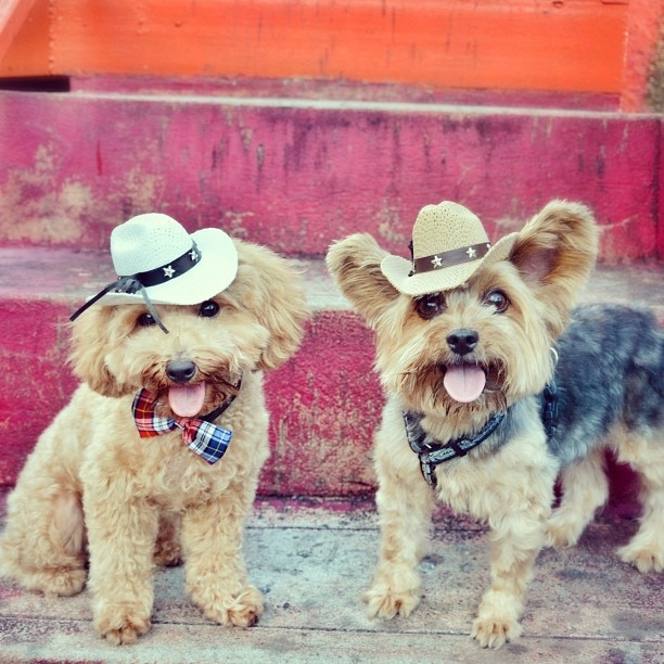 20 Most Cutest Instagram Pics Ever!