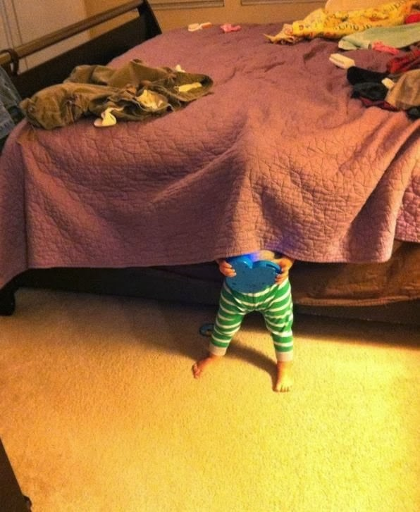 11 Best Funny Examples of Hide-and-Seek from True Professionals!