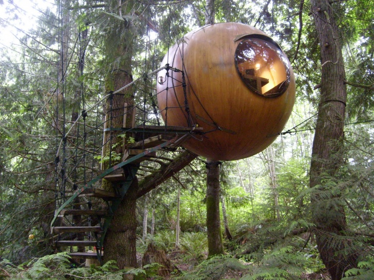 11 Most Amazing Tree Houses Around The World!