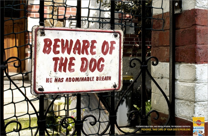 10 Really Funny Beware of Dog Signs!