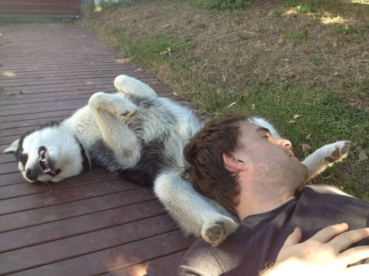 10 Hilarious Pics of Sleeping Animals!