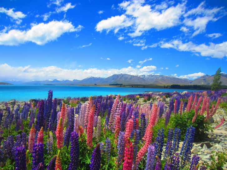 15 Amazingly Beautiful Places to Visit This Spring!